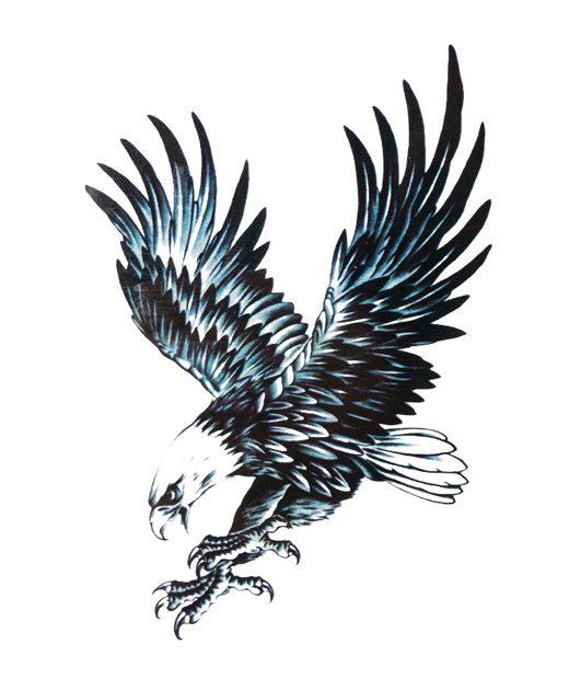 tatuaje temporal aguila feel tattoo