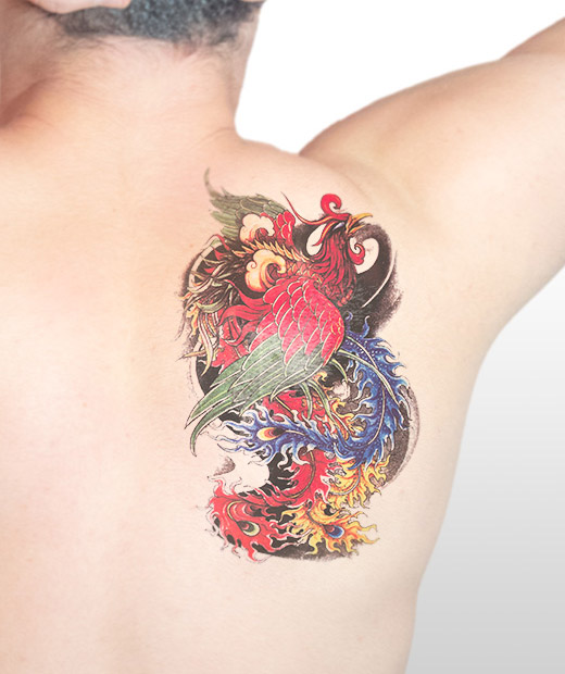tatuaje temporal fenix modelo feel tattoo