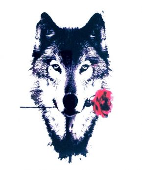 tatuaje temporal lobo rosa feel tattoo