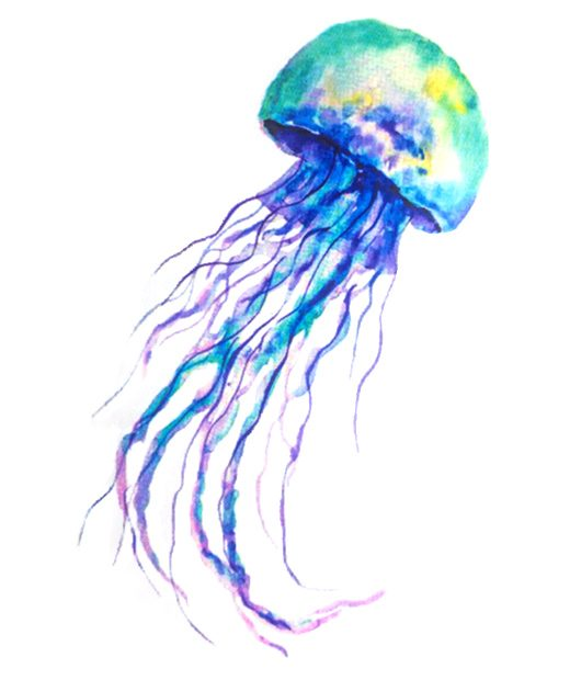 tatuaje temporal medusa acuarela